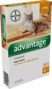 Advantage 40 Vlooiendruppels Kat tot 4 kg - 4 Pipetten